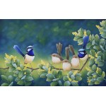Wattle Time Wrens by Katherine Castle