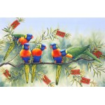 Colour Carnival Rainbow Lorikeets by Katherine Castle