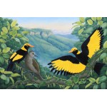 A Golden Moment Regent Bowerbird by Katherine Castle