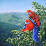 Crimson Rosella Country by Katherine Castle